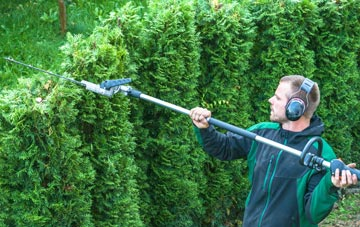 Liverpool hedge trimming costs